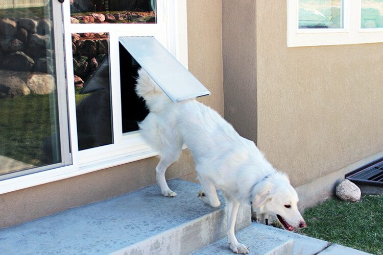 Dog Door Sliding Glass Pet Door Utah Endura Flap Doggie Doors