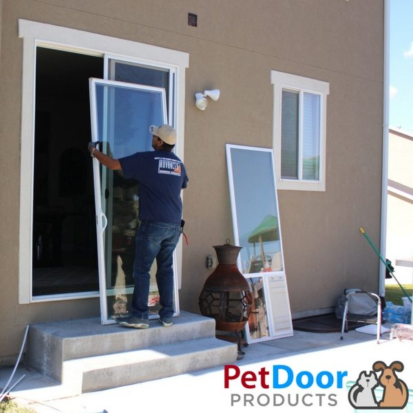Professional Sliding Glass Pet Door Install Sliding Glass