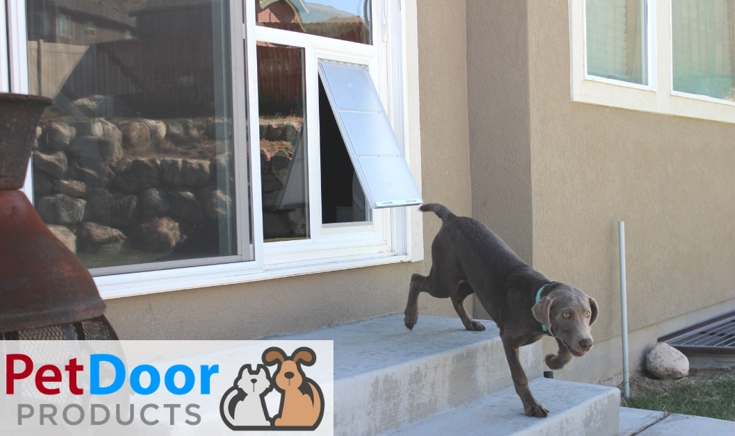 pet door for extra large dogs
